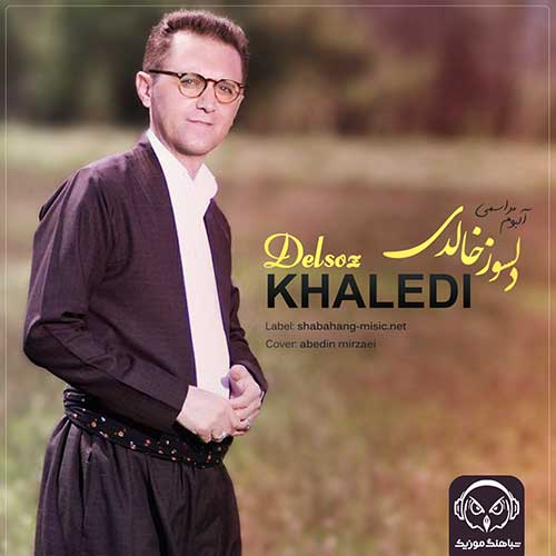 دانلود آلبوم جدید دلسوز خالدی - خرداد 99